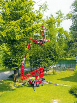 Hire a Hinowa Goldlift - boom lift for tree surgeons in Sussex, Surrey, Herts, Bucks, Beds